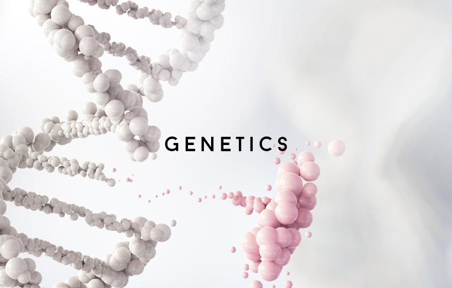 Course Image Genetics